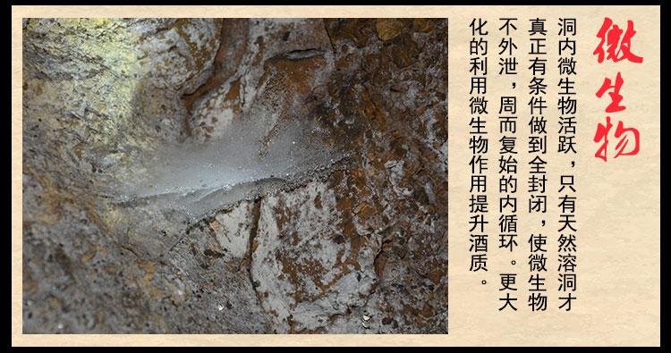 地方陳釀酒-頁面3_16.jpg
